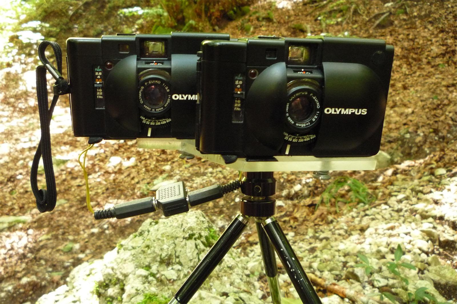 La fotografia stereoscopica donato d 39 alessandro - Stereoscopio a specchi ...